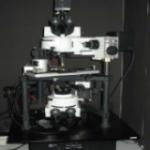 Multiview 4000 SNOM (NANONICS)