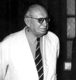 Prof Badarau